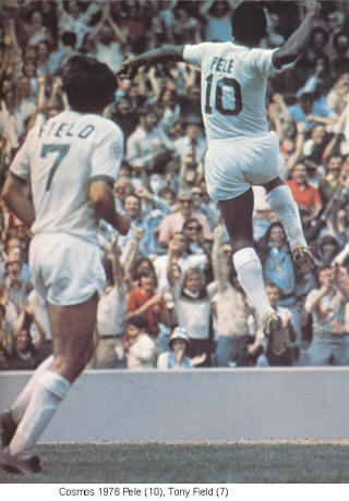 NASL Soccer New York Cosmos 76 Home Back Tony Field