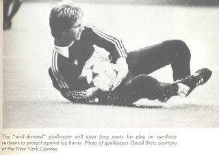 NASL Soccer New York Cosmos 80 Goalie David Brcic 2
