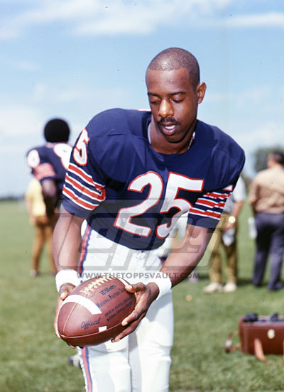 Image result for linzy cole chicago bears
